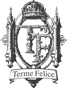 代官山・武蔵小杉のオーガニックエステサロン | テルメフェリーチェの本年もどうぞよろしくお願い致します。